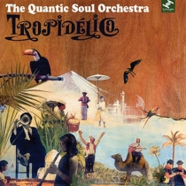 The Quantic Soul Orchestra Image
